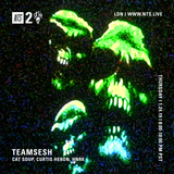 TeamSesh w/ Cat Soup, HNRK and Curtis Heron - 24th January 2019