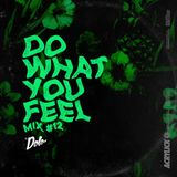 Acrylick x Dolo - Do What You Feel 012