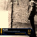 FLUX 37 // Guestmix: Twoheavi