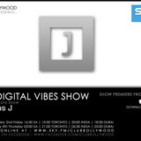 The Digital Vibes Show with Vikas J - Episode 1 (Global Show Premiere)