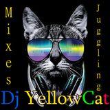 HipHop Dancehall Chutney Soca BemBow Etc Mix By YellowCat