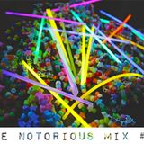 The Notorious Mix volume 13 (Part 1 - Tech House)(Mixed by NTRSDNS)