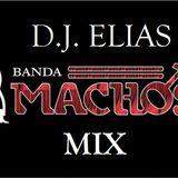 DJ ELIAS - BANDA MACHOS MIX