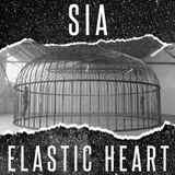 Sia - Elastic Heart (John Michael & Floor One Main Mix)