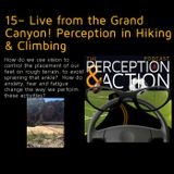 15– Live from the Grand Canyon! Perception in Hiking & Climbing