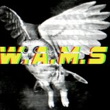 WAMScast - Episode 10 - May 2010 - Dubstep