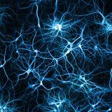 Synapsengewitter und Neuronenfeuer