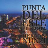 HERNAN NUNZI PUNTA DEL ESTE HITS 2014