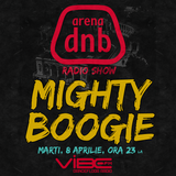 Arena dnb radio show - vibe fm - mixed by MIGHTY BOOGIE - 8 APR 2014