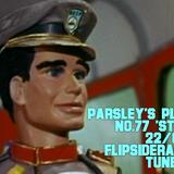 Parsley's Playlist No.77 'Standby'