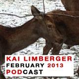 Kai Limberger Podcast February 2013