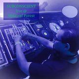 Subconscient Live Dj Set @ Mystical Forest ॐ Chichén Itzá ॐ