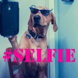 WillOo - # Selfie !