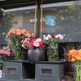 SHOPLIFTING AT THE FLOWER SHOP
