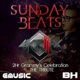 SundayBeats Beatshouse Skrillex & Dubstep Grammy's Celebration