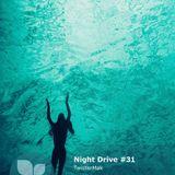 Night Drive #31