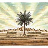 Blun Father - Tropical Lullabies in the Desert