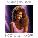 Whitney Houston - How Will I Know (John Michael & Floor One Remix)
