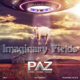Imaginary Fields- Singularity Tribe- Live Show