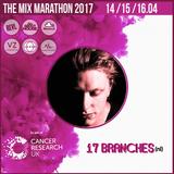 The Mix Marathon 2017 - SINGLE UPLOADS - 17 BRANCHES (nl)