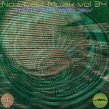 "No Coast Muzik Vol 34 ""Midwest Depth"" Mixed by: Brian Gardner"
