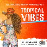Tropical Vibes #1 (02.05.2015) - Warm Up