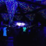 Comsat & Petar @ Transylvaliens  Festival 2018 (Romania)