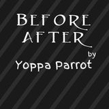 dj Yoppa Parrot -  Before After