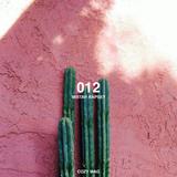 012 | Mistah Rapsey