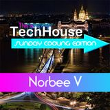 Norbee V - This is Tech-House: Sunday Cooling Edition (Episode 2)