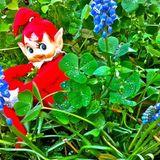 Fantasy garden 1