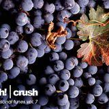 ish! - crush (seasonal tunes v.7)