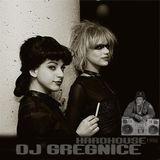 Dj GregNice - Techno Hard House Mixtape 1995