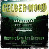 Moe Jaksch - Gelber Mond (Lee Jokes Tech-House Rmx) B1