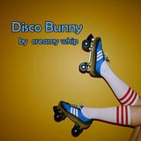 Disco Bunny  ( April Mix 2017 )