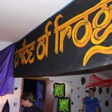 Sascha Recht @ NYE Tribe of Frogs - Shake the Temple 01.01.15