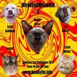 Wotta Mess @ WeekEnd WonkOut 3 - Wonky.FM - 02.09.2017