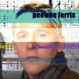 Peewee Ferris DJ mix NYE 2013