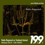 Radio Ragweed w/ Ambient Animal - May 16th, 2018