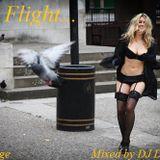 In Flight - Lounge Mix