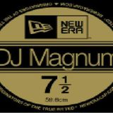 DJ Magnum - Old Skool Jungle Mix Vol 8
