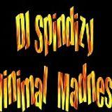 DJ Spindizy - Minimal Madness