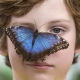 "RADIO EFFE    I Bambini farfalla e la cena pro Caritas, weekend ""sociale"" a Castiglioni"