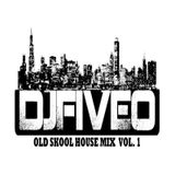 CHICAGO HOUSE MIX VOL. 1 - OLD SKOOL CLASSIC HOUSE VINYL MIX COLLECTION VOL. 1 DJ FIVE-O
