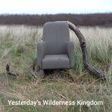 Yesterday's wilderness kingdom