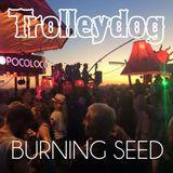 Trolleydog - Sunset Island Friday Sundown @ Burning Seed 2015