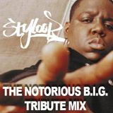 DJ STYLOOP - THE NOTORIOUS B.I.G. TRIBUTE MIX