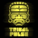 Tribal Pulse Podcast 008: Boom Merchant