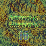 Psychedelic Wonderfuzz #16