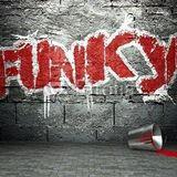 Pass 4 Funk - dj Rubens Fresh Set
